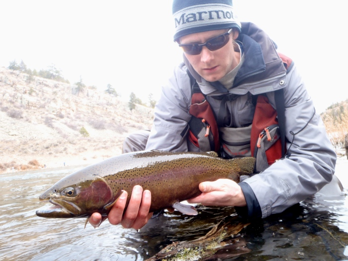 Brad Hansen's Rainbow Trout
