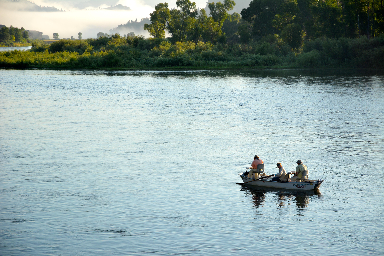 Missouri river fishing report 7 16 14 crosscurrents fly for Missouri river fishing